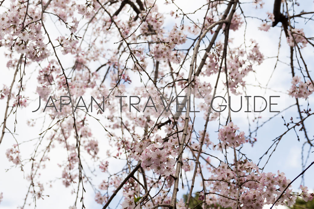 Japan Travel Guide - Travel Finds