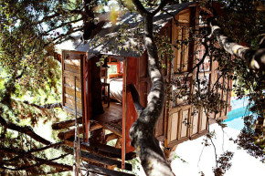 Andalucia-Spain-Treehouse