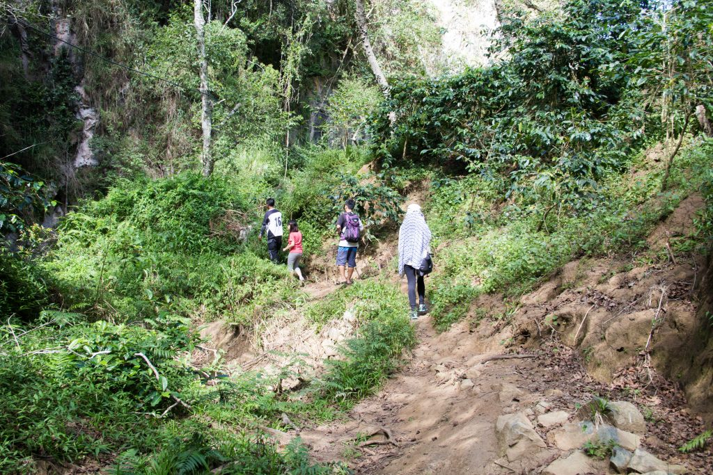 Trekking at the ecotrail, Sagada IMG_0742